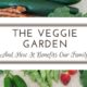 The Veggie Garden: Benefits Beyond Healthy Eating